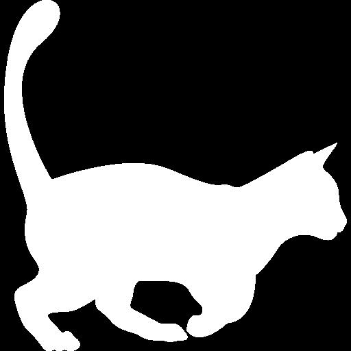 The Internet has a Cat! Meet Purrli, the Online Cat Purr