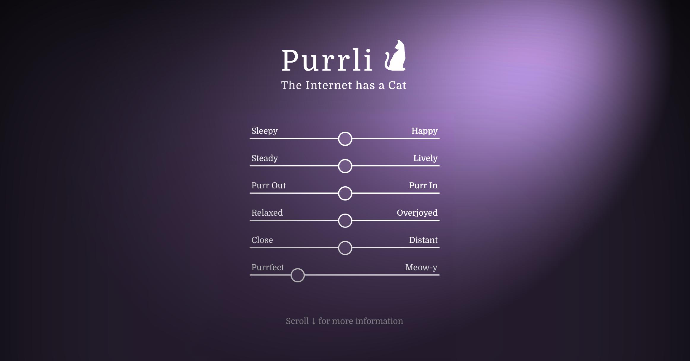 The Internet has a Cat! Meet Purrli, the Online Cat Purr Generator